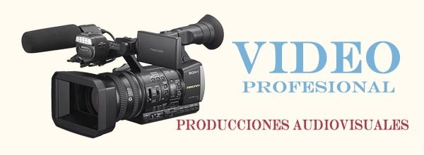 vide-profesional